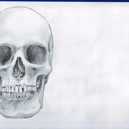Anatomy Study 004