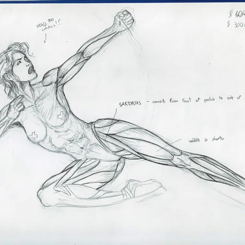 Anatomy Study 010