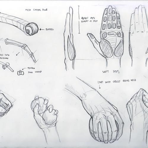 Anatomy Study 021